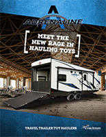 Adrenaline Brochure